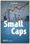 Small Caps - Uma análise das oportunidades e riscos das Small Caps